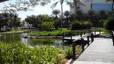 The perfect Workplace ! • Dubai Internet City • Dubai, UAE