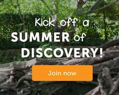Discover a Summer of Adventure
