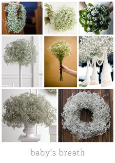 Wedding flowers - Babys breath may just be a cheap fantastic idea!  #GabrielCo #MyPerfectWedding