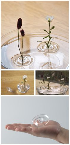 Floating Ripple Vases (by oodesign)