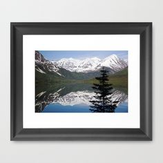 Mountain Reflection with Lone Pine Framed Art Print by Shawn Terry King