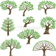 I kind of want a Tree of Life tattoo (in black) ...
