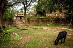 math and temples near the sacred ghats on river Tunga (bhadra) at Tirthahalli, Shimoga, Karnataka.