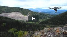 DroneSeed: Precision Forestry - Demo Video  We're a precision forestry company that serves timber companies and NGOs by bringing technology to tree planting, protective spraying and data collection. Forestry…