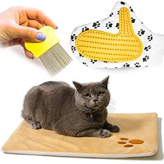 cat shedding toy - Vangardio Thermal Mat - Self Warming Heating Pad for Pets Cat and Dog Bed - Grooming Glove and Hair Comb included - Perfect 3 in 1 Bundle Gift Set ** See this great product. (This is an affiliate link) Bed Mats, Cat Shedding, Small Cat, Cat Grooming, Cats And Kittens, Pet Supplies, Kids Rugs, Hair Comb, Dog Beds