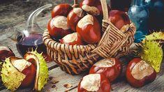 Kaštany, plody stromu jírovec maďal, léčí revmatismus, dnu, kašel, bolesti zad i hlavy. Kaštany pomáhají i v kapse a v posteli. Recepty na tinkturu a mast