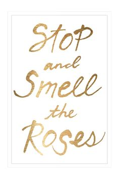 Stop & Smell the Roses.
