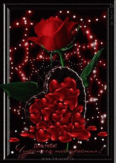 The perfect Red Roses Animation Animated GIF for your conversation. Roses Gif, Flowers Gif, Pretty Flowers, Love You Gif, Love You Images, Beautiful Gif, Beautiful Roses, Hearts And Roses, Red Roses