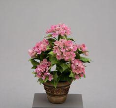 Janice Kimbro pink hydrangea