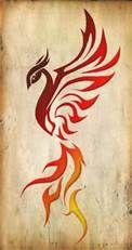 pheonix tattoos - Bing Images