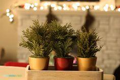 Christmas 2014 Home Tour - Life On Virginia Street - Kitchen Decor