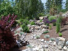 Dry creek bed, might look good in a flat landscape.