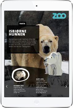 Zoo Free Interactive Magazine. More on www.magpla.net MagPlanet #TabletMagazine #DigitalMag