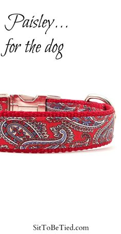 Paisley dog collar. Red designer dog collar in a paisley pattern.