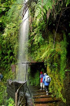 Levada walking in Madeira Island - Portugal by !eberhard, via Flickr