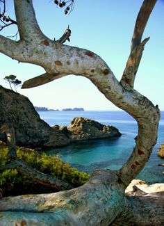 Ibiza, an island in the Mediterranean Sea, 79 kilometers off the coast of the city of Valencia in east Spain.