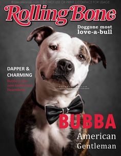 Magazine cover promos are a great way to catch public attention for adotpable pets! This design is by HeARTs Speak member, Breanna Rae Photography.