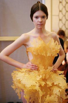 Iris Van Herpen Haute Couture A/W12