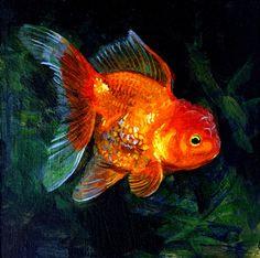 Print: Goldfish Painting, Original print, ornamental variety. $20.00By Kirsten Borror, via Etsy.