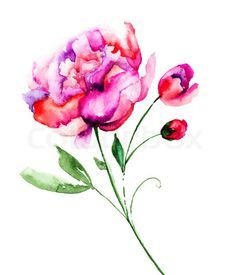 small peonies tattoo - Google Search
