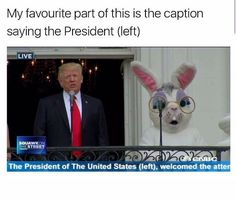 I'd rather have the bunny as president. Funny Pins, Lol Funny, Haha, Funny Texts, Funny Cute, Funny Jokes, Hilarious, Funny Easter Quotes, Easter Funny