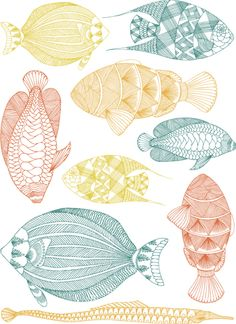 fishes painting // dibujo peces
