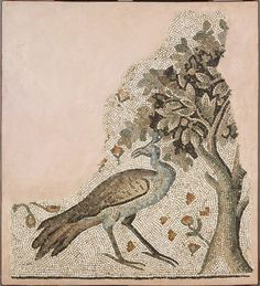 Fragment of an Ancient Mosaic Pavement, 5th-6th Century, Syrian. Peacock's were thought to symbolise renewal. Harvard Art Museum