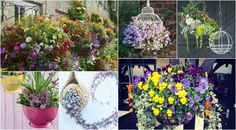 15 beautiful hanging baskets for your garden inspiration