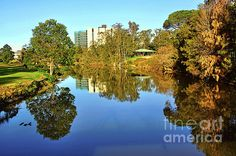 #Tranquil #River by #Kaye_Menner #Photography Quality Prints Cards Products at: http://kaye-menner.pixels.com/featured/tranquil-river-by-kaye-menner-kaye-menner.html