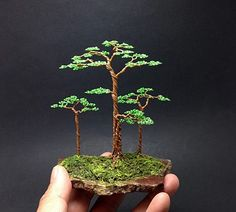 Bonsai wire creation by Ken-To