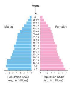 Population pyramid chart #dataviz #howto