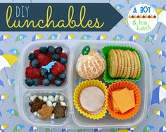 Adorable, quick, easy, and healthy bento lunch ideas...DIY lunchable