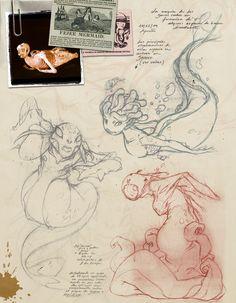 Mermaids and underwater sea creatures