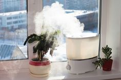 Unsing humidifier helps keep home moist. Pot Rack Hanging, Hanging Pots, Portable Humidifier, Small Garden Landscape, Cleaning Silver Jewelry, Clean And Shiny, Ventilation System, Dehumidifiers, Household Cleaning Tips