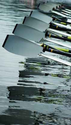 Join a rowing club Row Row Row, Row Row Your Boat, The Row, Rowing Team, Rowing Club, Rowing Oars, Remo, Arnold Schwarzenegger, Rowing Photography