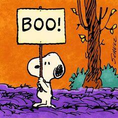 One week until Halloween! Charlie Brown Y Snoopy, Charlie Brown Halloween, Peanuts Halloween, Days Till Halloween, Holidays Halloween, Happy Halloween, Halloween Ideas, Halloween Images, Halloween 2017