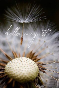 Hello August! Exactly one year from today I will be a Mrs. Can't wait marry my honey.
