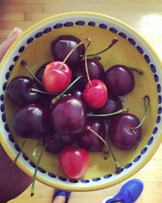 Life is literally just a bowl of cherries...from #andysorchard