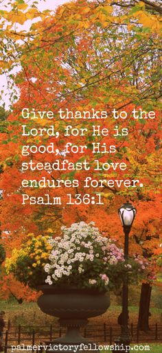 Give thanks unto the Lord, for He is good, for His steadfast love endures forever. Psalm 136:1