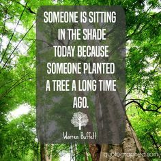 """Investing Picture Quotes - """"Someone is sitting in the shade today because someone planted a tree a long time ago.""""- Warren Buffet"""