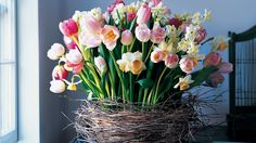 This oversize nest cradles an exuberant mix of blooms from spring-flowering bulbs –– the botanical counterpart to newly hatched birds. Pliable birch branches circle and ordinary wooden basket, giving the nest its ethereal, light-as-a-cloud appearance. The flower stems are supported by floral foam set in a plastic liner.