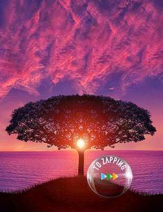 Impresionante puesta del sol
