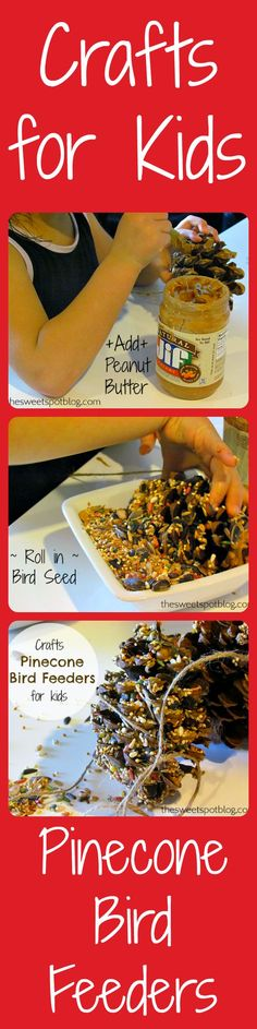 Crafts for Kids: Pinecone Bird Feeders  http://thesweetspotblog.com/pinecone-bird-feeders-crafts-kids/  #craftsforkids #pinecone #birdfeeder