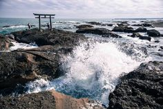 カメラ女子にもおすすめしたい、茨城の華やかさと神秘的な絶景も撮影できちゃう旅プランです。四季折々の花畑、青い海、白い砂浜、緑の草原など、色鮮やかな絶景を楽しませてくれる「国営ひたち海浜公園」と、ひたちなか市にある「酒列磯前神社」と大洗町の「大洗磯前神社」、ともに国造りの神が祭られたパワースポットを巡ります。季節の花を楽しみ、宝くじ当選と良縁祈願ができるよくばりな女子旅におすすめなコースをご紹介します。