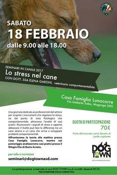 """""""Lo stress nel cane"""": riconoscerlo e abbassarlo è il tema del seminario Dog Town con Elena Garoni :http://www.qualazampa.news/event/lo-stress-nel-cane-riconoscerlo-e-abbassarlo-e-il-tema-del-seminario-dog-town-con-elena-garoni/"""
