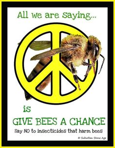 Protect the bees....