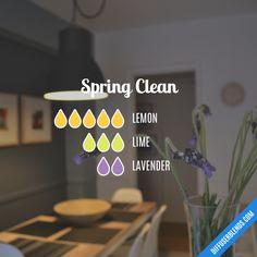 Spring Clean - Essential Oil Diffuser Blend