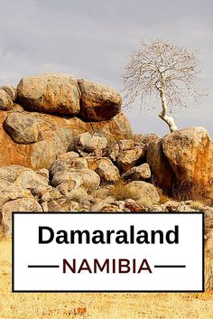 Travel Guide Namibia - Plan your trip to Damaraland Us Travel Destinations, Places To Travel, Places To Go, African Holidays, Safari, Road Trip Essentials, Roadtrip, Africa Travel, Plan Your Trip