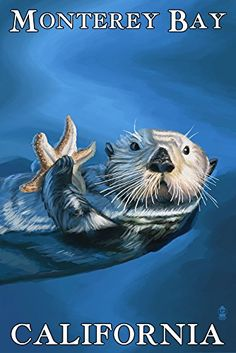 Shop for Monterey Bay, California - Sea Otter - Lantern Press Artwork (Art Print - Multiple Sizes Available). Get free delivery On EVERYTHING* Overstock - Your Online Art Gallery Store! Get in rewards with Club O! Monterey Bay California, California Travel, California Coast, Oregon Coast, Northern California, Cayucos California, Cambria California, Vintage California, Starfish Art