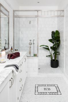 Does anyone else love the idea of adding a plants inside a shower !?